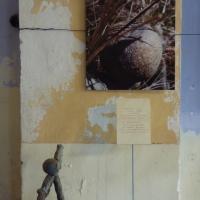 Association Art et Nature