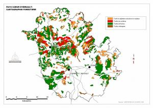 Cartographie forêt Pays Coeur d'Hérault